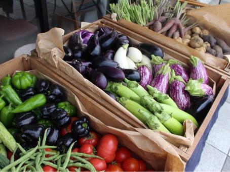 ヤサイノイトウ お野菜販売