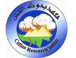 CRI Egypt Logo.jpg