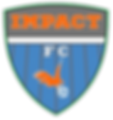 IMPACT LOGO - NEW.png