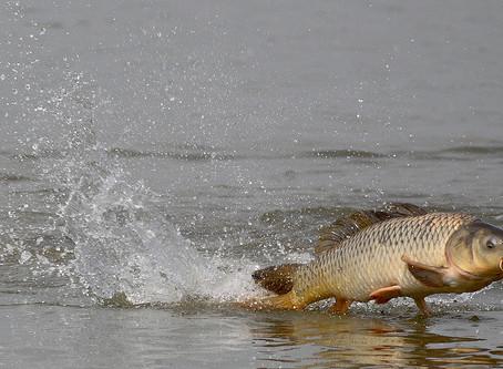 Скоро на рыбалку!