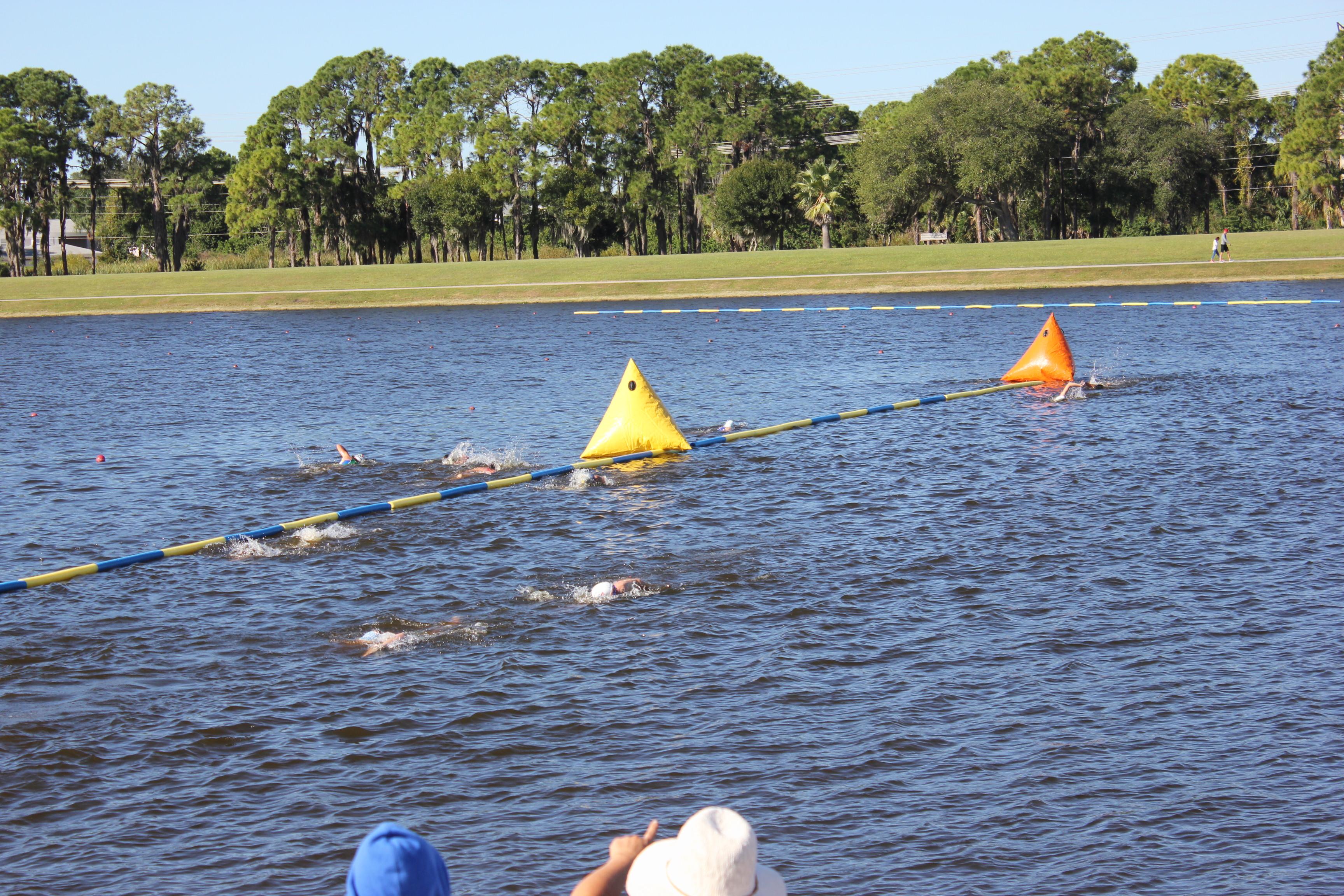 100m swim