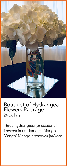 hydrangea package.png
