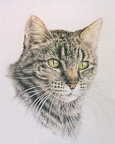Finger Lakes Pet Memorials - cat