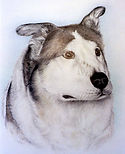 Finger Lakes Pet Memorials & Portraits