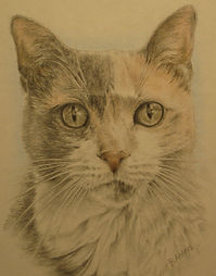 Artwork of Calico cat