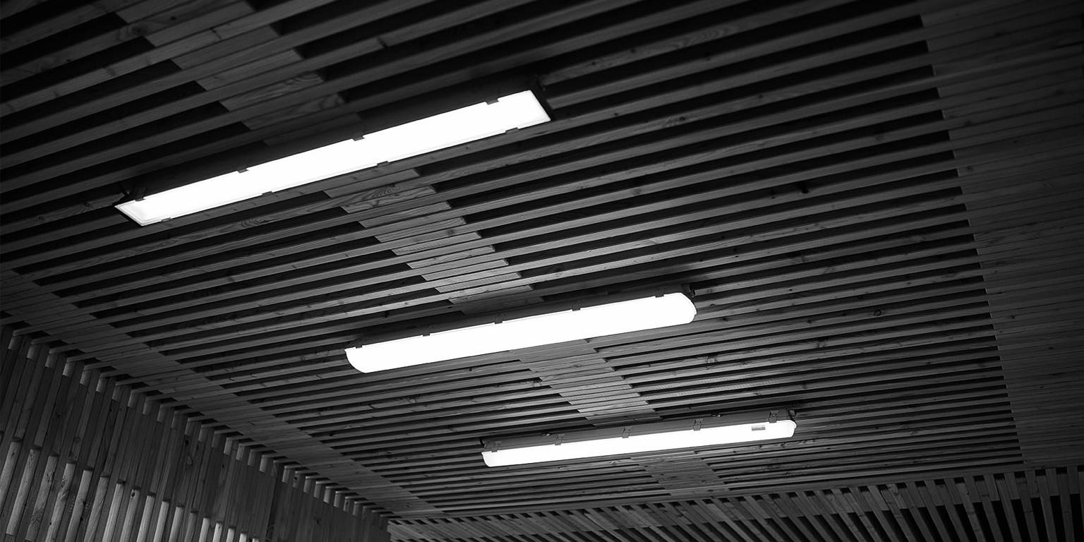 Trevos lights.jpg