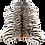 Thumbnail: Tapete de Couro Tigre