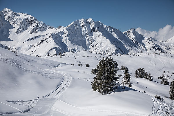 Langlaufen am Arlberg