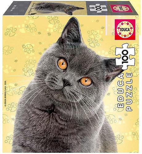 Britische kurzhaar Katze 100 Teile Puzzle