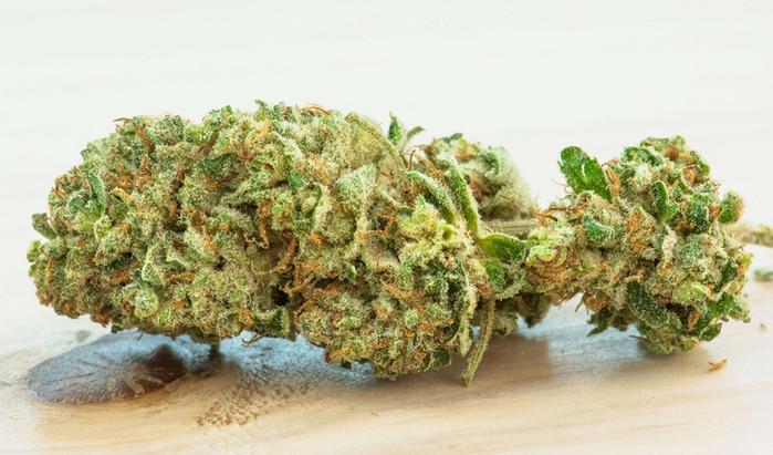 SWEET MATANUSKA GREEN