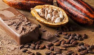 Le cacao cru… cette petite fève est une véritable pépite d'or !