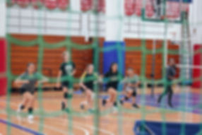 Volleyball programs.JPG