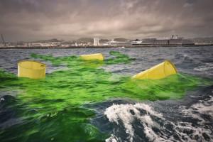 Atommüll im Meer