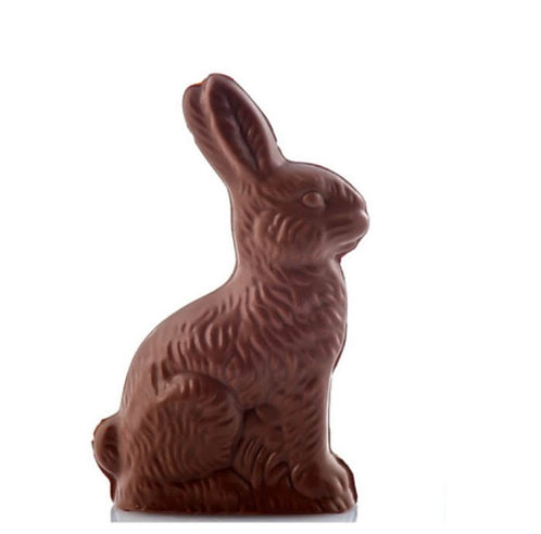 Hollow Chocolate Bunny 4oz.