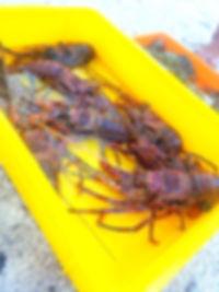 seafood in Sabah