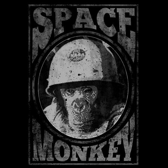 Space Monkey Midnight Manor
