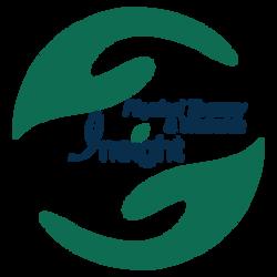 Insight PT Logo