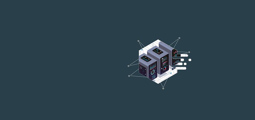 Software Platform Strip-01.png
