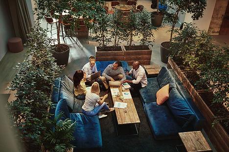 Indoor_garden_372273515.jpeg