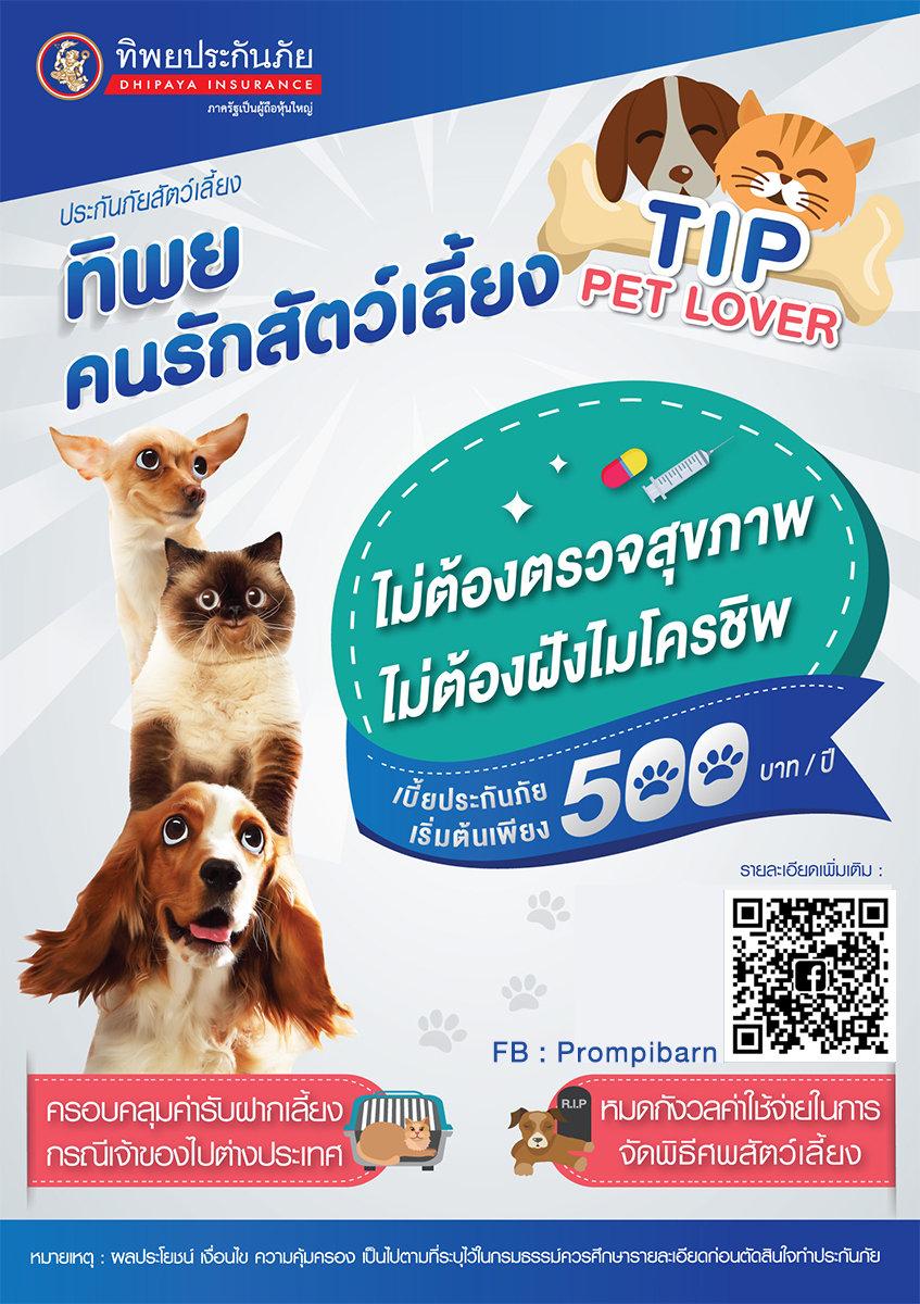 Pet Tip.jpg