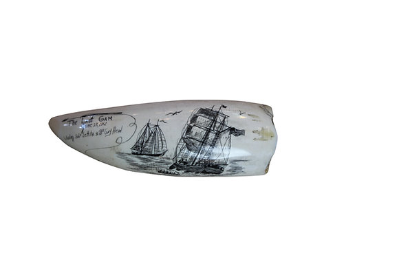 Signed Baleen Whale Scrim