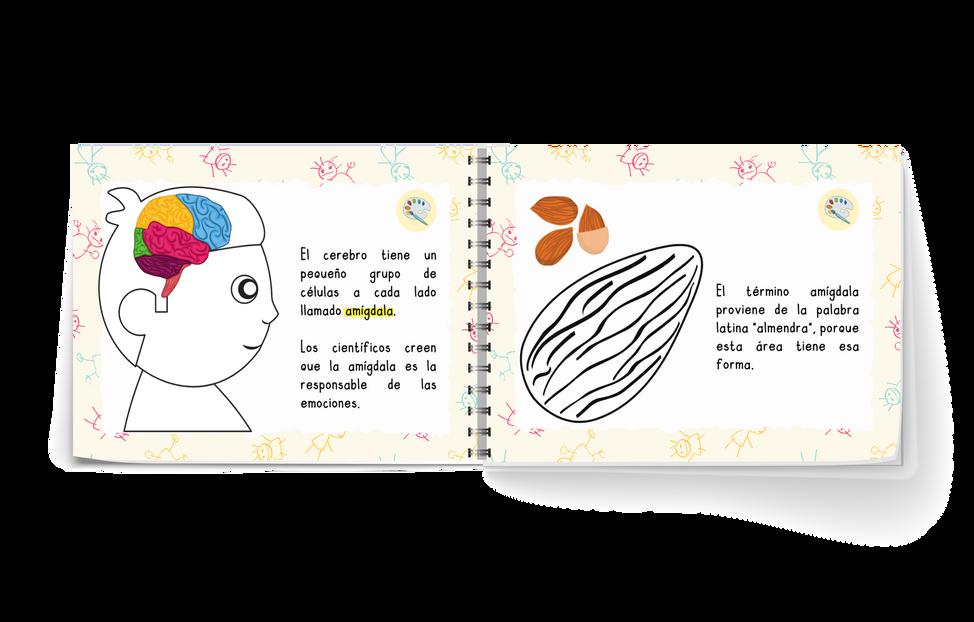 libro_a-02-02-01.png