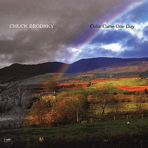 Color Came One Day (2004)