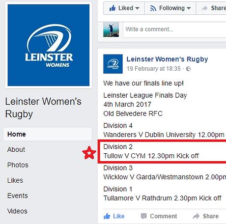 Leinster final fbook.png