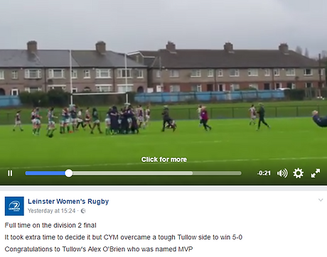 Leinster Womens.png