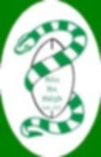 naas_rfc_logo.jpg
