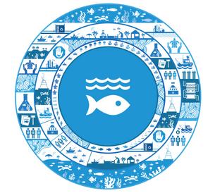 ONU Brasil lança publicação sobre objetivo global para preservar o oceano e a vida marinha