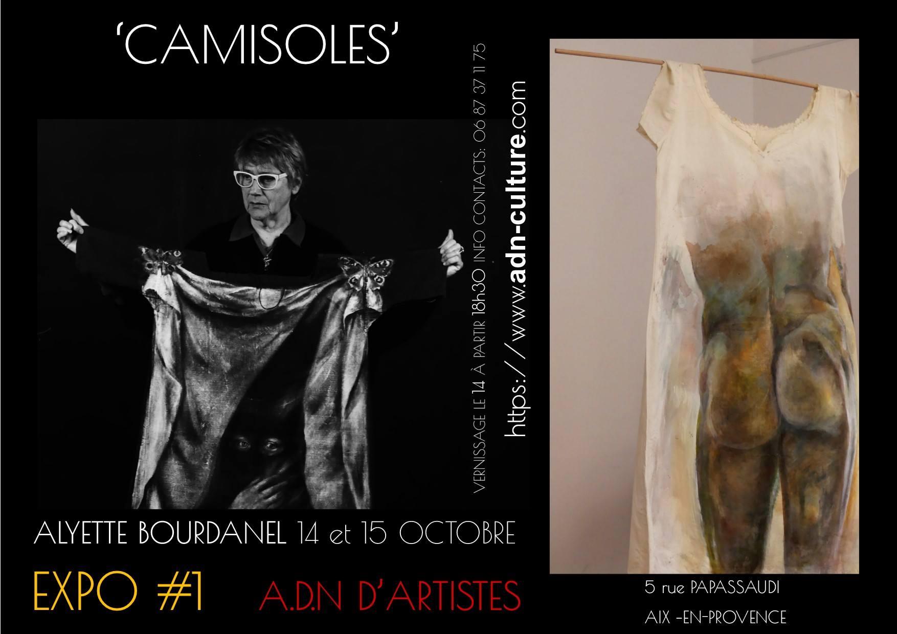 Aliette-Bourdanel-Alyette-Bourdanel-Artiste-peintre-et-plasticienne-exposition-Camisoles-à-la-galeri