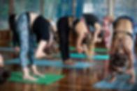 180923-Bowy-Yoga-HiRes-86.jpg