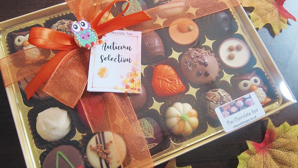 Autumn Selection 24 Box