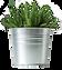 biljka-3.png