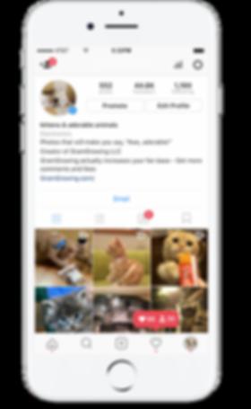 Reklamiranje na instagramu i facebooku   digitalna agencija   facebook   Studio 7