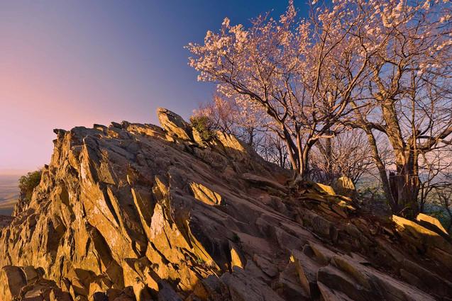 Scenic Virginia Landscape Photograph