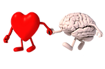 brain_health_and_heart_transparent.png