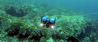 ROV-003.png