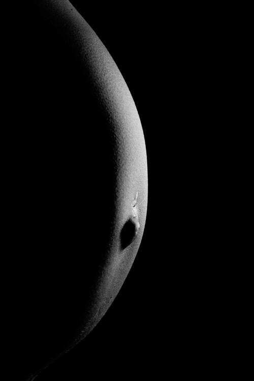 Schwangerschaft-Fotografie 1