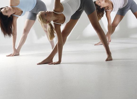 Full Yoga Program