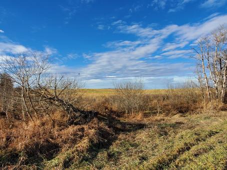 Cv̄ictus acquires Alberta site for first EHR demonstration