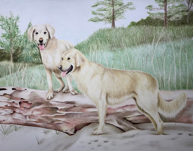 chalk pastel commission drawing by Mercedes Victoria of golden retrievers at the beach on a log family pet dog