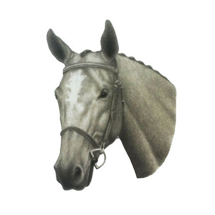 black and white chalk pastel commission drawing by Mercedes Victoria of horse head equestrian art