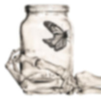 black and white chalk pastel drawing by Mercedes Victoria of skeleton hand holding monarch butterfly in glass mason jar