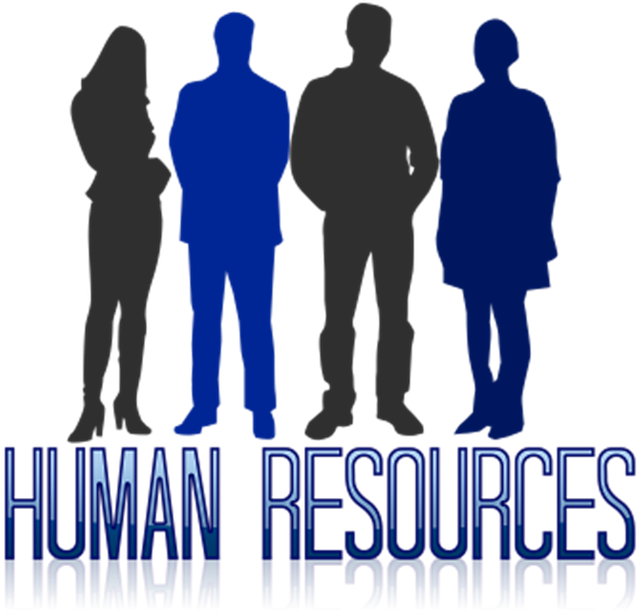 human resources employment lawyer