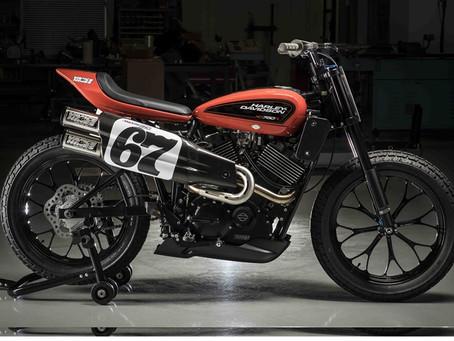 El Harley-Davidson Factory Team listo para la temporada de Flat Track