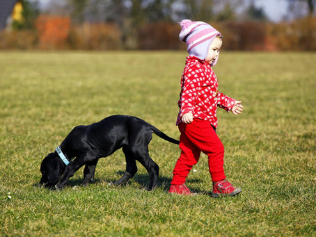 Les enfants et le chien