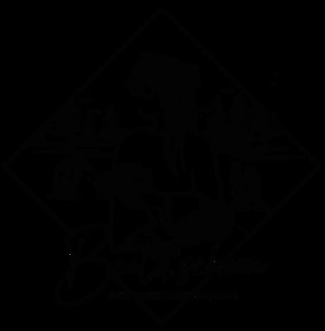 Primair_logo_zwart_150.png