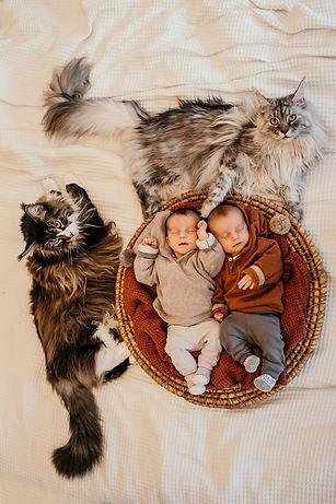 Newborn-Harper&Charlotte-kleinformaat-70